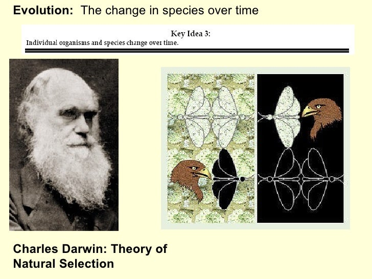 Evolution:   The change in species over time Charles Darwin: Theory of Natural Selection