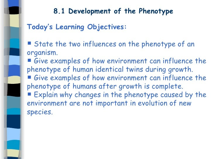 8.1 Development of the Phenotype Today's Learning Objectives:  State the two influences on the phenotype of an organism. ...