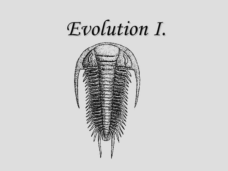 Evolution I.