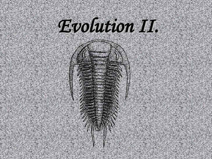 Evolution II.