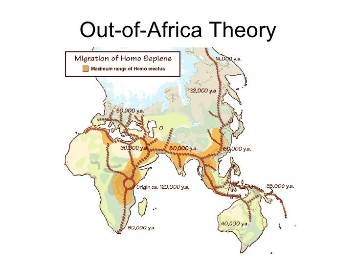 A comparison between the out of africa theory and the multiregionalism theory