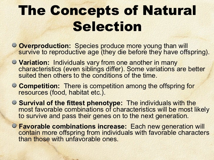 Concepts Of Natural Selection And Evidence Of Evolution