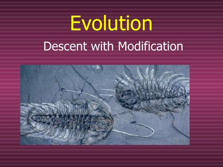 Evolution Descent with Modification