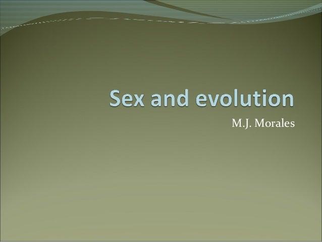 M.J. Morales