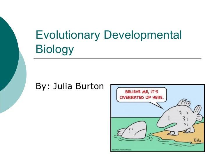 Evolutionary Developmental Biology By: Julia Burton