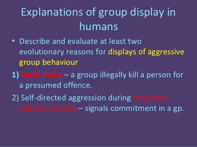 evolutionary explanation of aggression infidelity and jealousy Lesson 6 in the flipped classroom lessons on aggression for aqa(a) psychology a2 this video is on evolutionary aggression and focuses on jealousy and.