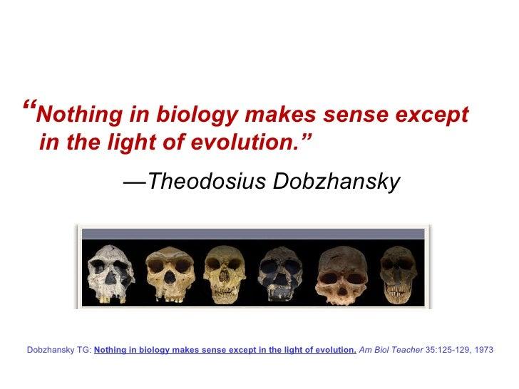 Evolutionary Medicine Frankfurt