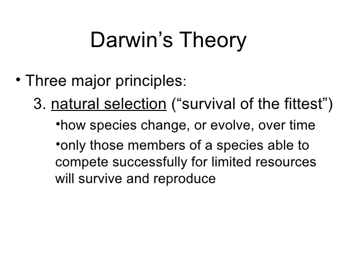 theory of evolutionary psychology He was referring to the theory that music is a useless by-product of natural   anthropologist edward hagen and evolutionary psychologist.