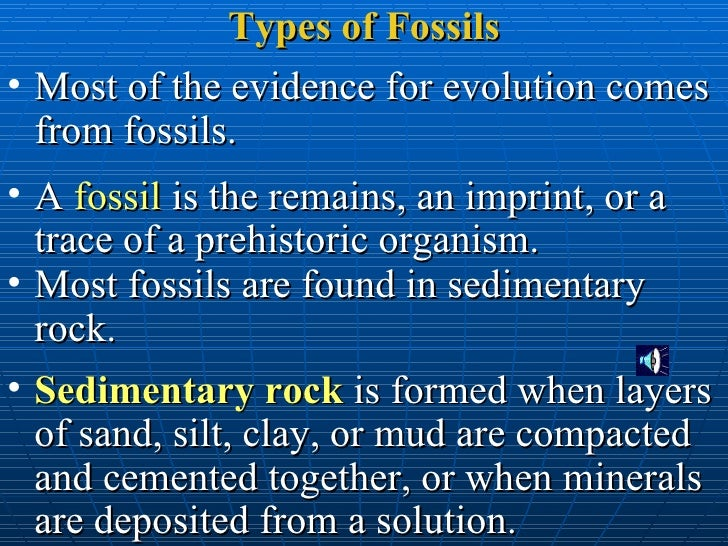what are two types of dating fossils In dating the past, the primary value of fossils lies within the principle of faunal the more ways in which two rocks are physically alike, the more likely it is that.