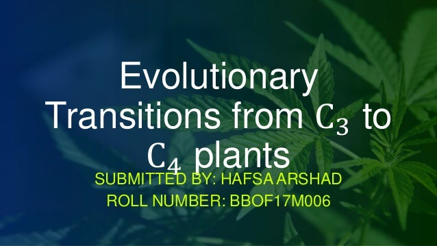 Evolutionary Transitions from C3 to C4 plantsSUBMITTED BY: HAFSA ARSHAD ROLL NUMBER: BBOF17M006