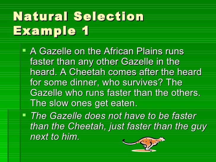 Natural Selection And Reproductive Fitness