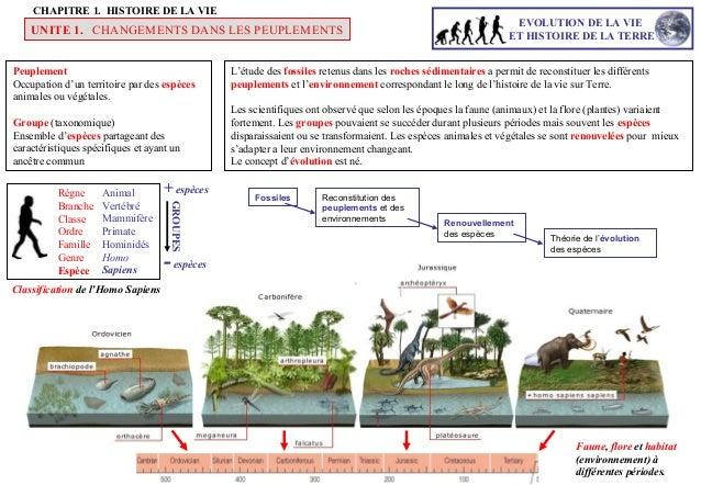Evolution chapitre 1 - Definition d une histoire ...