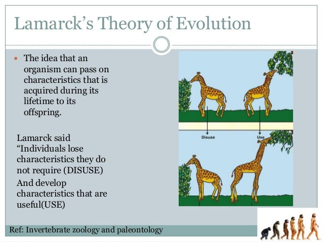 Lamarck and Darwin: Summary of Theories