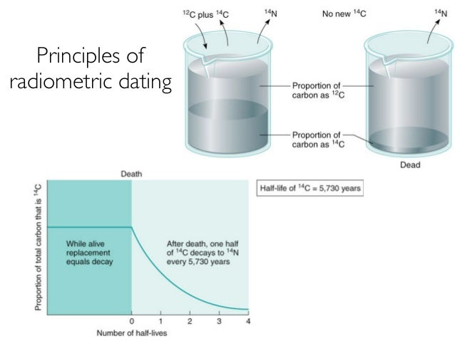 Stratigraphy absolute dating examples 4