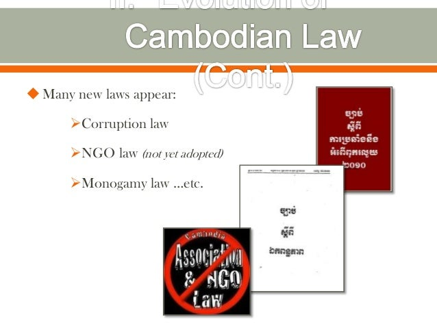  Many new laws appear:      Corruption law      NGO law (not yet adopted)      Monogamy law …etc.
