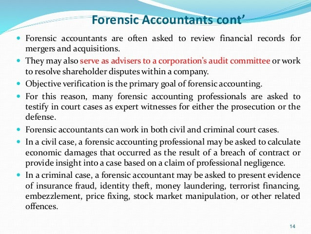 Accounting Expert Witnesses