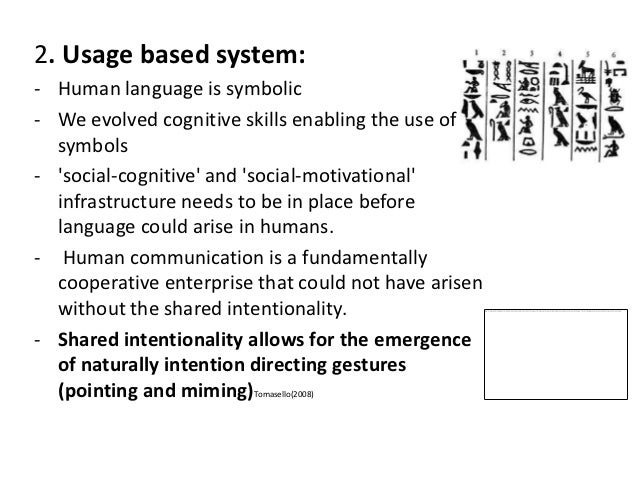 the importance of language in the human evolution The emergence of language was a defining moment in the evolution of modern humans it was an innovation that changed radically the character of human society here, we provide an approach to language evolution based on evolutionary game theory we explore the ways in which protolanguages can evolve.