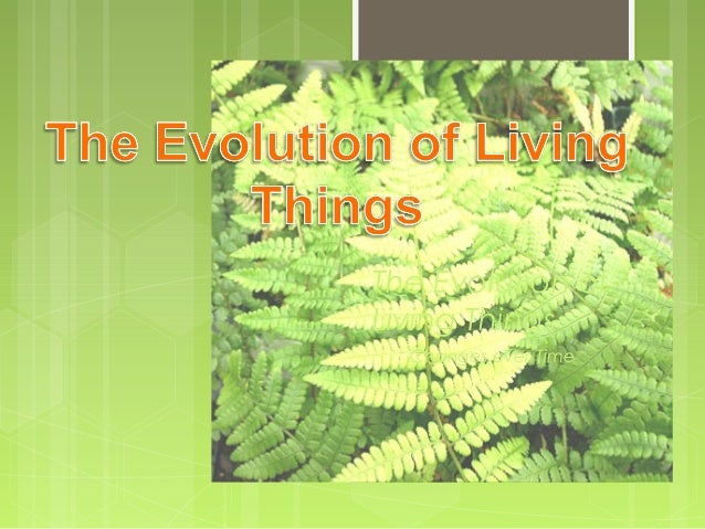 The Evolution of Living Things Changes over Time