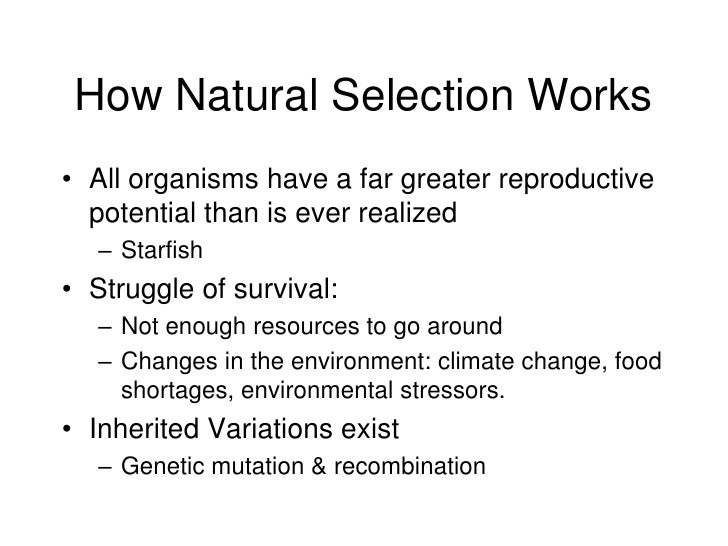 Natural Selection Works On The Of An Individual Organism