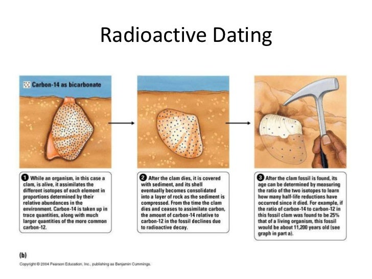 Why is radioactive hookup so important for the study of evolution