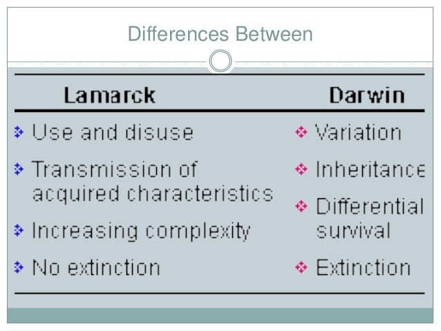 similarities and differences in different versions [guest post] cantonese vs mandarin: similarities and differences  cantonese vs mandarin: similarities and differences  each variant is different, although there are similarities as well as a whole, chinese is the top in demand language when it comes to translation services but what are the differences between cantonese vs mandarin.