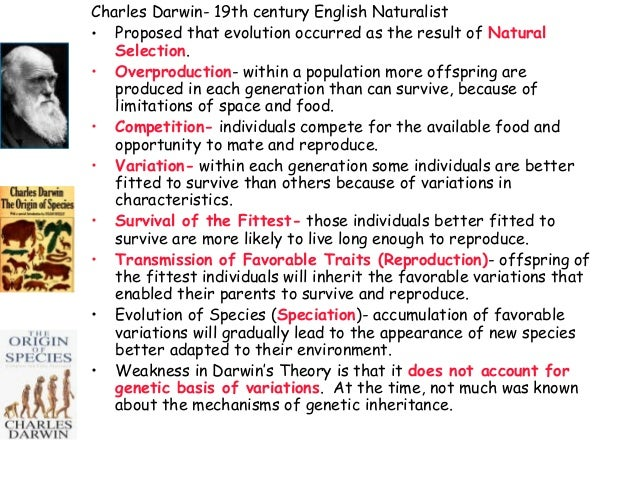 charles darwin theory of evolution essay The theory of evolution was controversial ever since it was formulated by charles darwin it contradicted the view of animals and humans being created by god and replaced it by a notion that organisms evolved from.