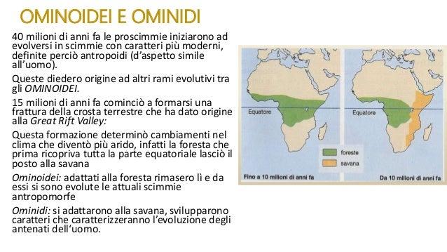 Evoluzione uomo 1 Slide 3