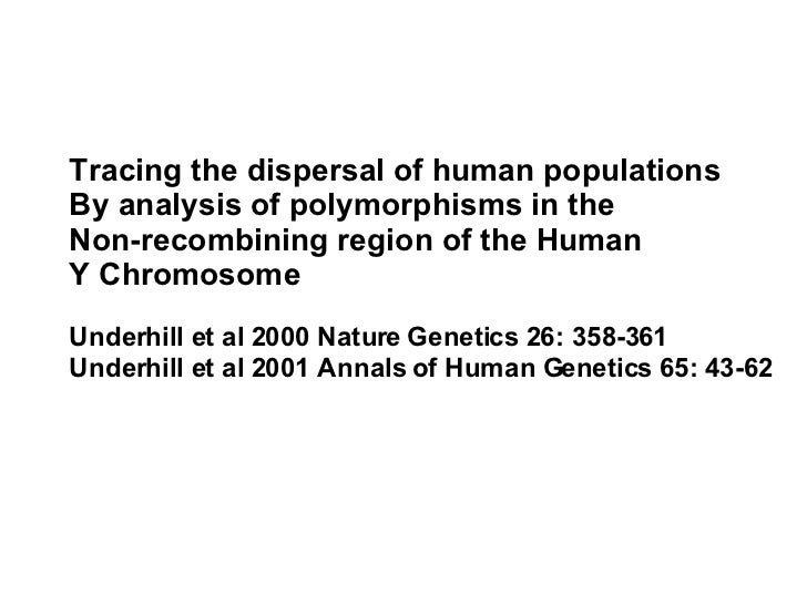 Tracing the dispersal of human populations  By analysis of polymorphisms in the  Non-recombining region of the Human  Y Ch...