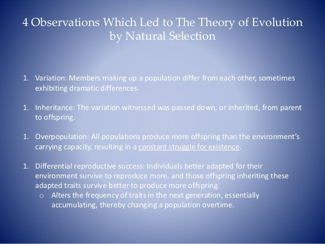 Comparison Between Genetic Drift And Natural Selection