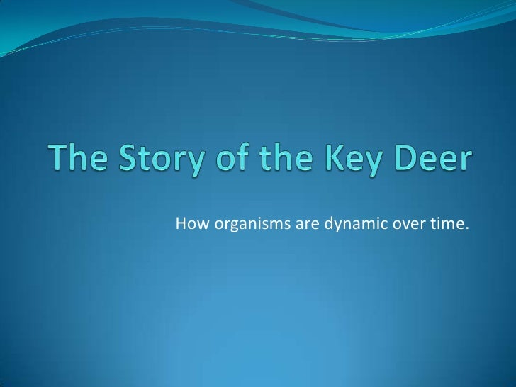The Story of the Key Deer<br /><br />How organisms are dynamic over time.<br />