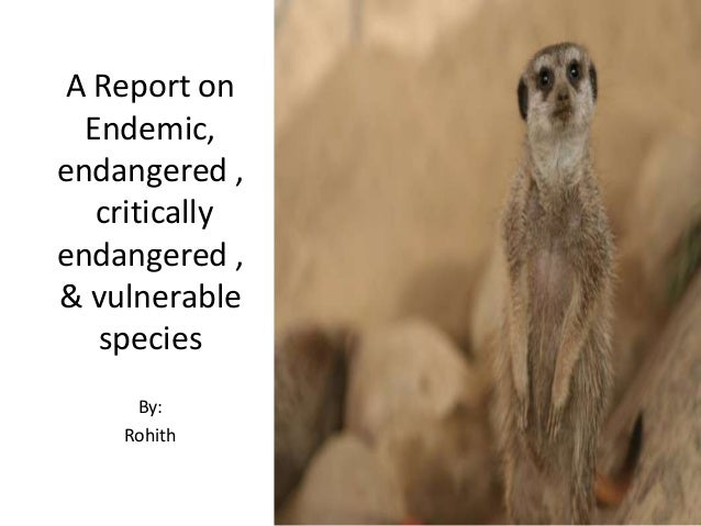 A Report on Endemic, endangered , critically endangered , & vulnerable species By: Rohith