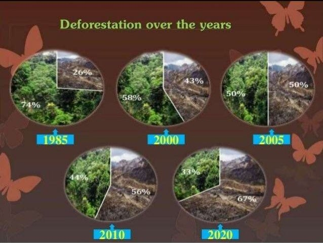 What are the major Consequences of Deforestation?