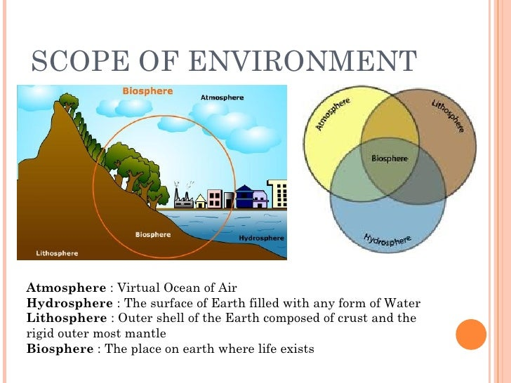 Holistic Nature Of Environmental Science