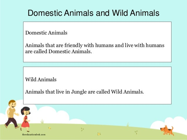 Environmental Science (EVS) : Animals (Class I)