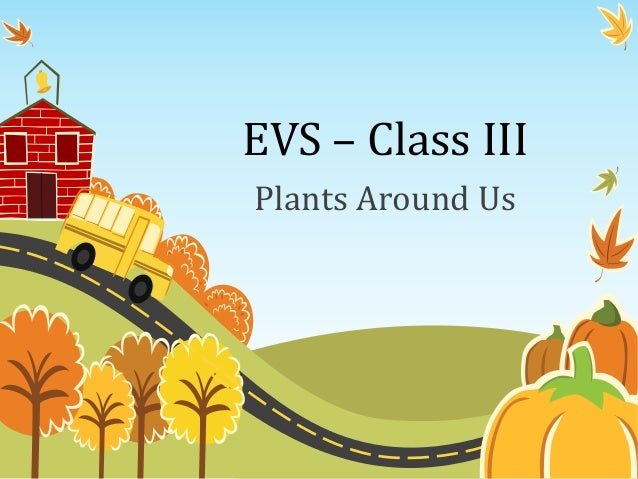 Environmental Science (EVS) : Plants Around Us (Class III)