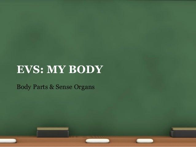 Environmental Science (EVS) : Body Parts (Class I)