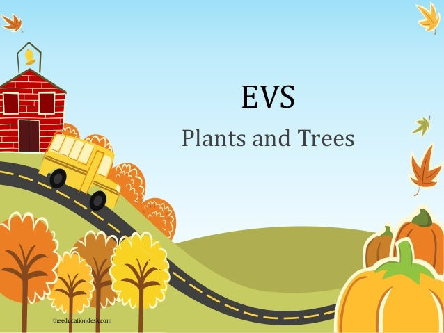 EVS Plants and Trees theeducationdesk.com