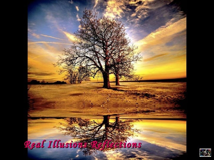 Real Illusions Reflections