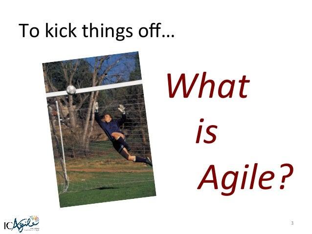 Ewan   developing the agile mindset for organizational agility Slide 3
