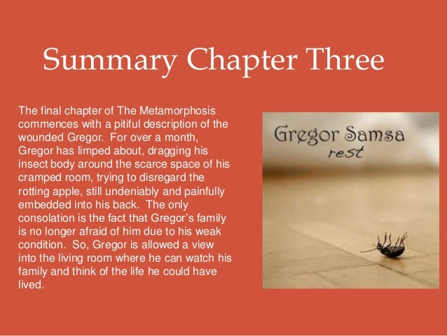 an overview of gregors metamorphosis The metamorphosis: novel summary: section 1, free study guides and book notes including comprehensive chapter analysis, complete summary analysis, author biography information, character.