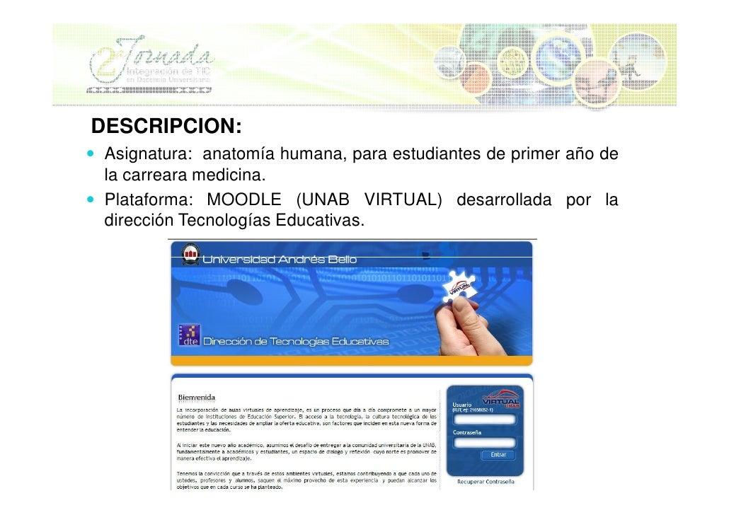 Bonito Sitios Web De Anatomía Para Estudiantes De Medicina ...