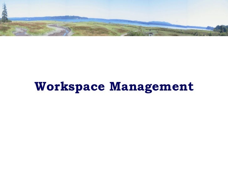 <ul><li>Workspace Management </li></ul>