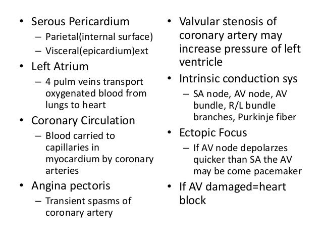 Anatomy Physiology 2 Heart Blood Vessels Exam 3