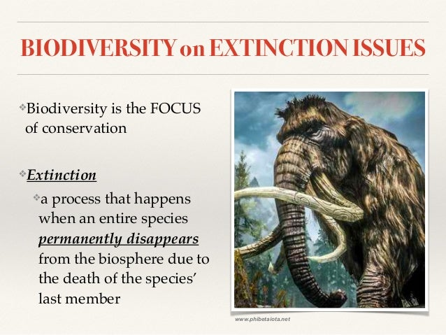 biology extinction Biology (3,691) business studies (3,813)  science case study - dinosaurs  extinction usually occurs if a specie on earth cannot adapt quickly enough to a.