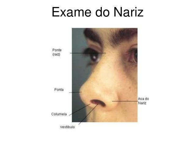Exame do Nariz