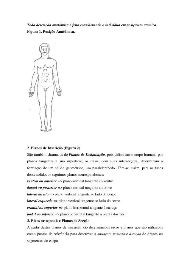 Exame eletroneuromiografia dos membros superiores