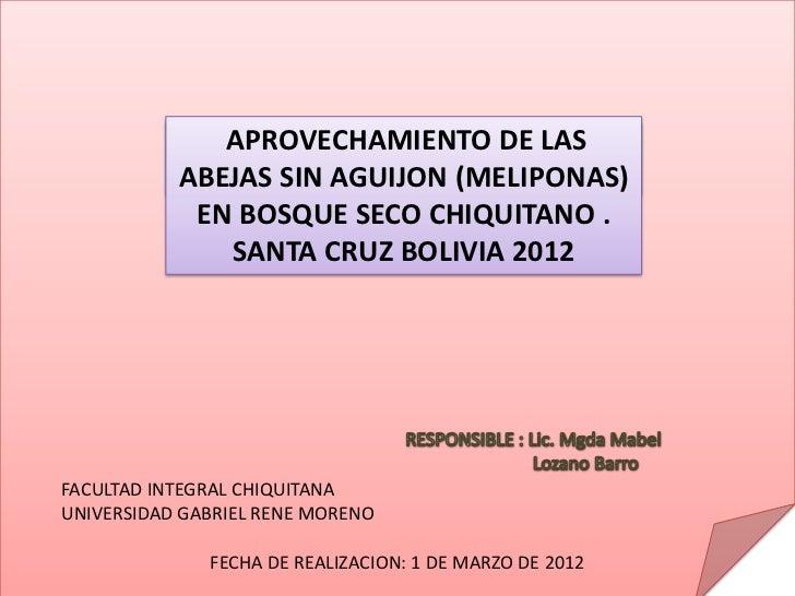 APROVECHAMIENTO DE LAS             CONTENIDO:             SITUACION PROBLEMATICA           ABEJAS SIN AGUIJON (MELIPONAS) ...