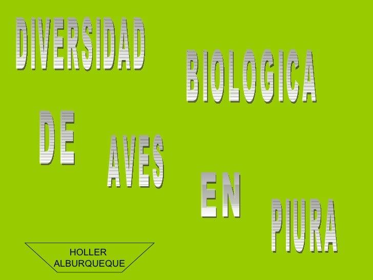DIVERSIDAD BIOLOGICA DE  AVES EN PIURA HOLLER  ALBURQUEQUE