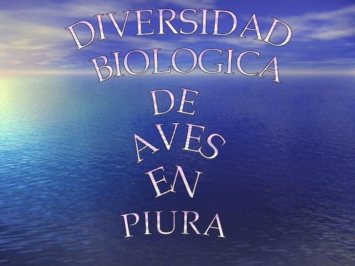 DIVERSIDAD BIOLOGICA DE AVES EN PIURA
