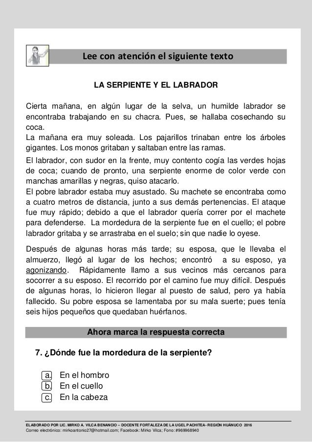 ELABORADO POR LIC. MIRKO A. VILCA BENANCIO – DOCENTE FORTALEZA DE LA UGEL PACHITEA- REGIÓN HUÁNUCO 2016 Correo electrónico...